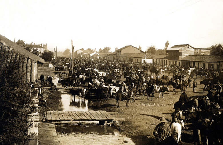 18FeriadeChillan1906enterreno